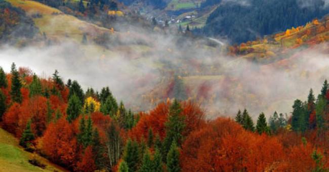 Уголки Карпат, которые стоит увидеть собственными глазами, или Осеннее путешествие в горы