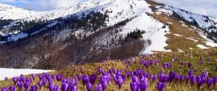 Апрельские путешествия по Украине, или 23 прекрасных места которые нужно посетить весной