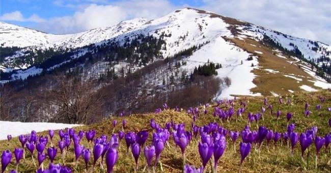 Квітневі подорожі Україною, або 23 найкрасивіших місця, що необхідно відвідати навесні>