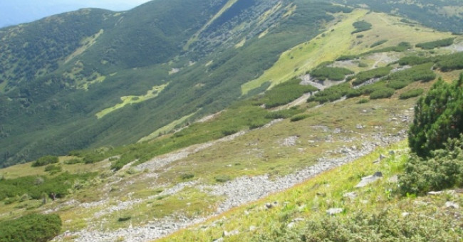 Село Осмолода: Горгани і їх жителі>