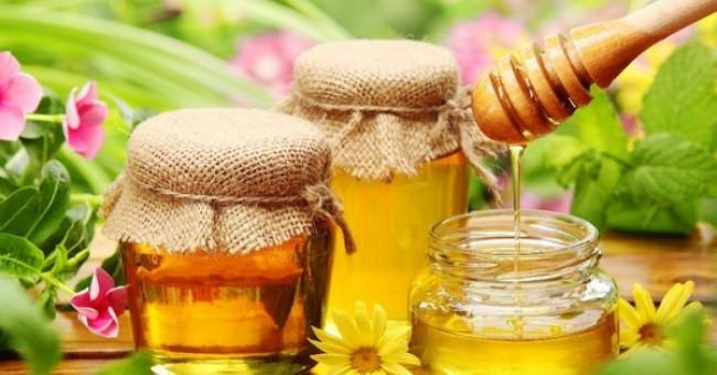 Бджільництво в Україні>