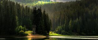 Топ-10 найпрекрасніших природних творінь України