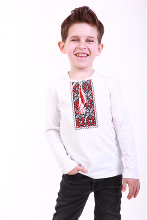 Футболка для хлопчика «Кольорова» біла з бордовим