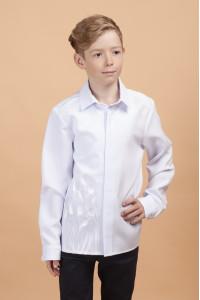 Вишиванка для хлопчика «Тюльпанове поле» білого кольору