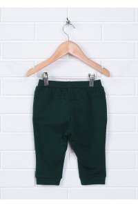 Штаны «Квентин» зеленого  цвета