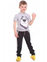 Штани «Джонго» сірого кольору