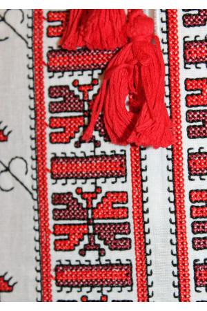 Вишиванка для хлопчика «Полуботок» з вишивкою червоного кольору
