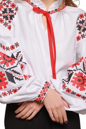 Жіноча вишиванка «Квіти зорі» з червоно-чорним орнаментом