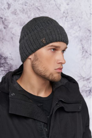 Мужская шапка «Райян» цвета графит