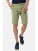 Мужские шорты «Дэн» зеленого цвета