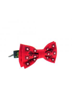 Комплект для хлопчика: краватка-метелик та підтяжки «Павлусь»