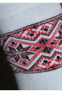 Вишиті жіночі шкарпетки Ж-09